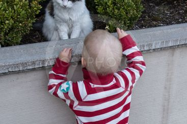 pojken som pratar med katten