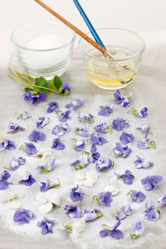 Making candied violets