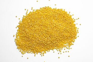 Raw millet groats