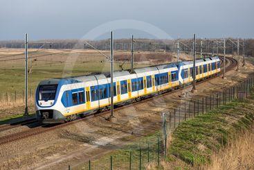 Dutch railway through National Park Oostvaardersplassen...