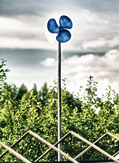 Blue Garden Windmill