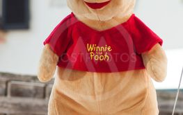 winnie the pooh pluh suspended at the flea market in the...