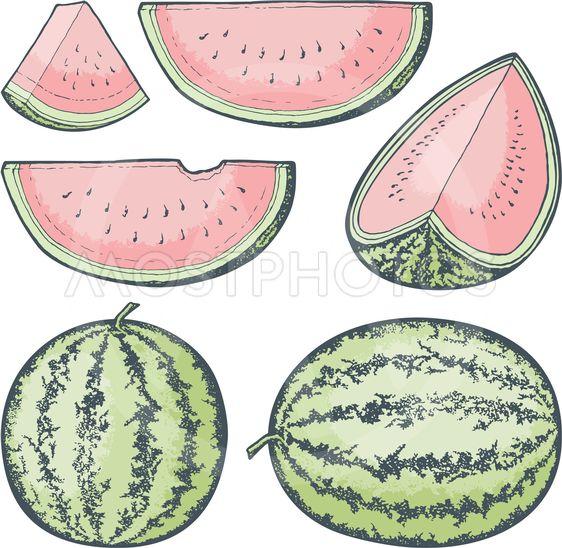 Watermelon Sketches