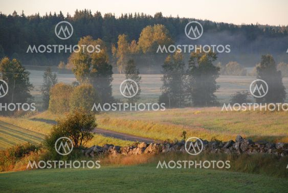 Morgonsol och dis över landskapet  (Sweden)