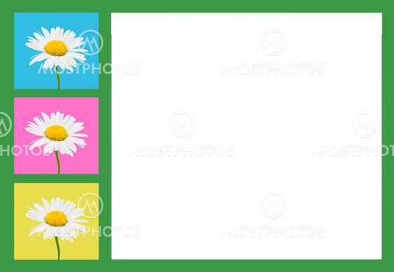 Sammansättningen av camomile blommor i en ram