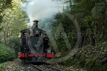 Puffing Billy train ride through the Dandenong Ranges...