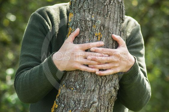 man hugging a tree in a forest