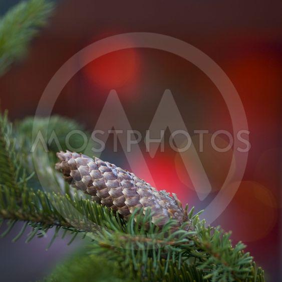 Julgran detalj
