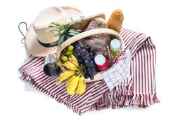 Basket filled food fruit striped plaid Picnic summer