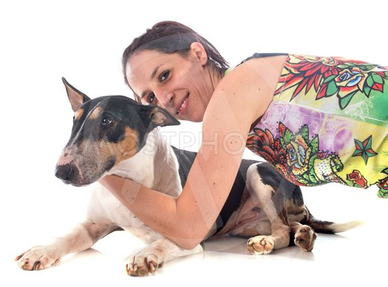 bull terrier and woman