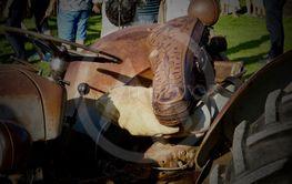 Traktorförarsits med fiollåda