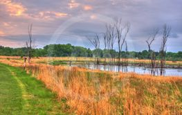 An HDR landscape of a lake in the meadow in soft focus