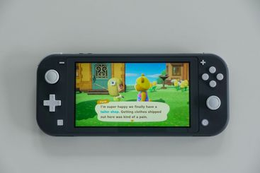 Two characters in the game Animal Crossing New Horizons...