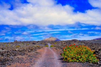 spain,canary islands,lanzarote :  timanfaya, path