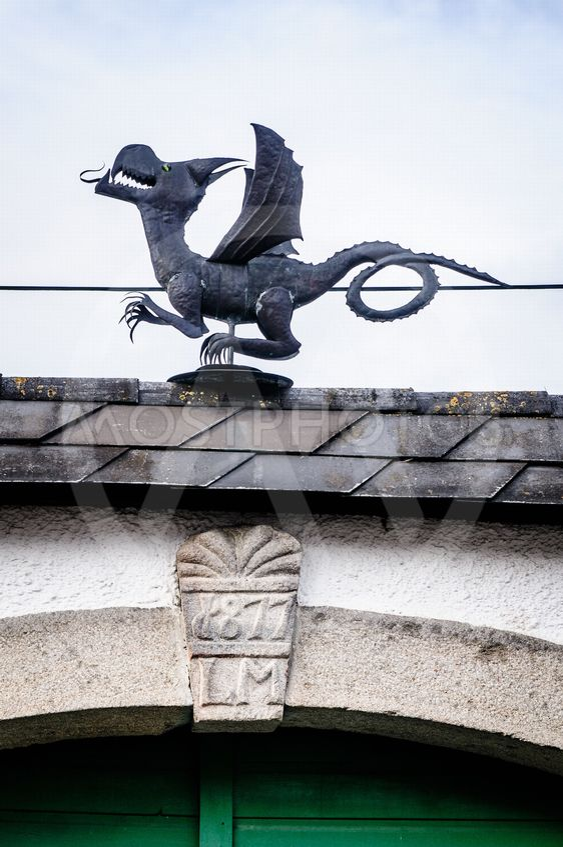 Metal Dragon on the Roof