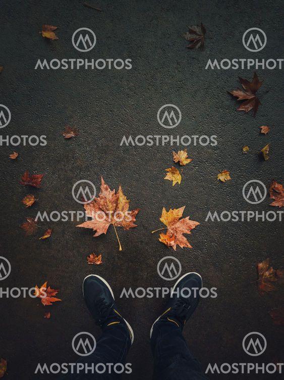 Autumn season lifestyle. High angle view of man feet on...