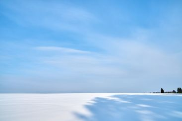 Snow covered field with forest. Winter landscape