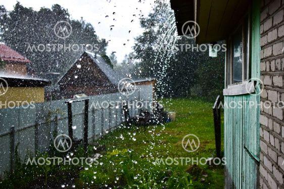 whim of nature - summer rain