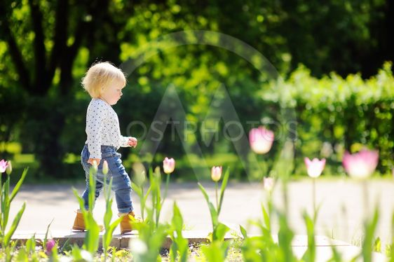 Toddler boy walking in the park