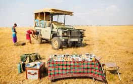 Luxury safari breakfast