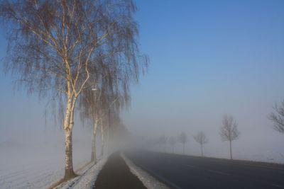 snow field in fog