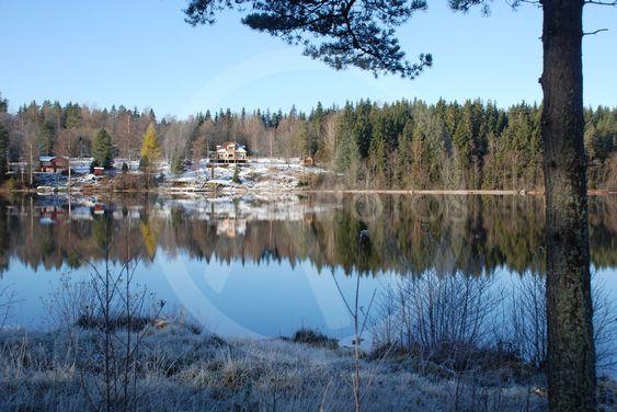 Frostig dag vid Sjunnarydssjön i Småland 5  (Sweden)