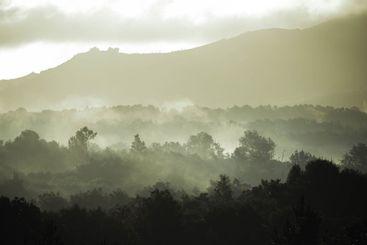 paisaje de un hermoso amanecer en la niebla