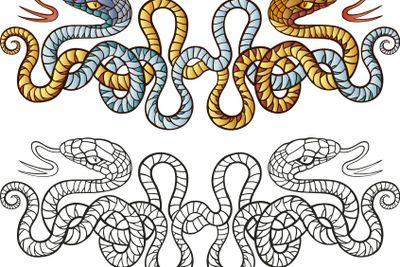 Snakes tattoo design