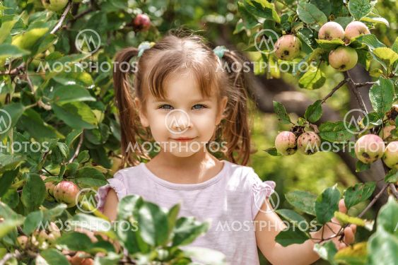 portrait of a little girl among the branches of an apple...