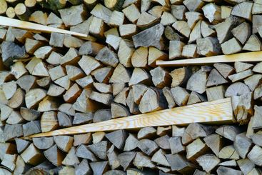Holzstapel | stack of wood