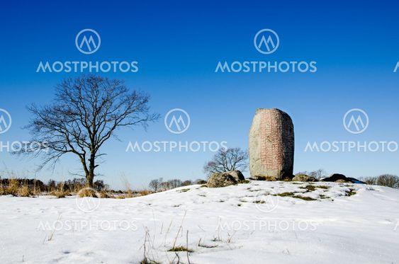 Vikings runestone
