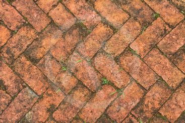 old red brick floor with moss