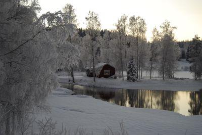 Vinter runt stugan