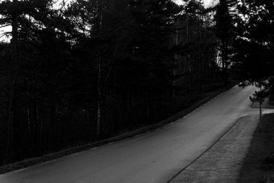Damp dark road