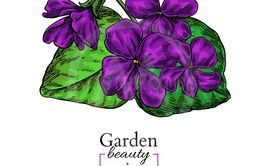 Violet flower drawing. Vector hand drawn floral bouquet....