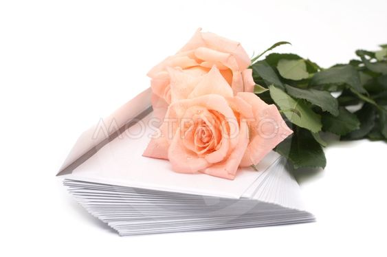 Rose and pile of envelopes on a white background