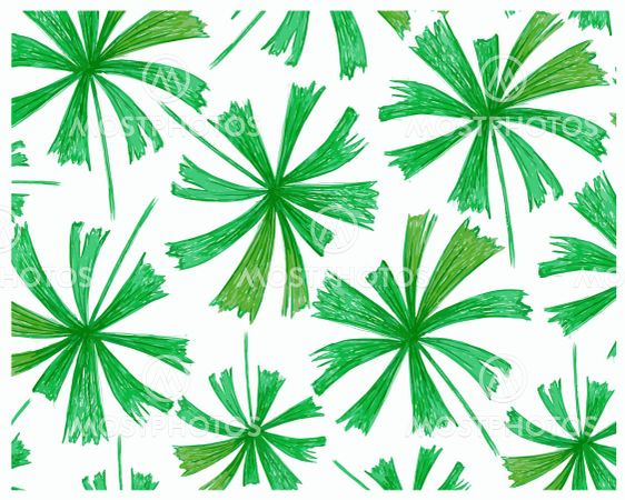 Illustration Sketch of Beautiful Mangrove Fan Palm...