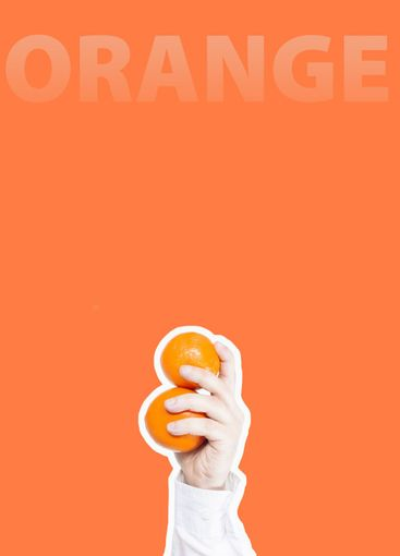 Hand holding two oranges