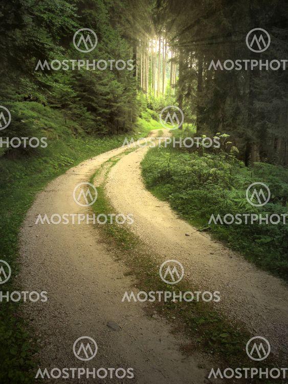Enchanted tieliikenteen