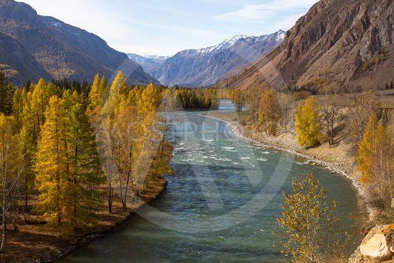 Katun River at autumn in Altai Republic, Russia.