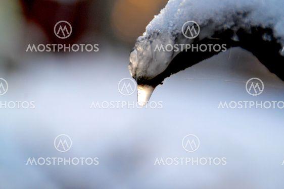 Frusen droppe