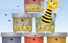 funny bee and beehive