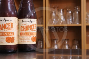 James Squire - The Chancer, Golden ale