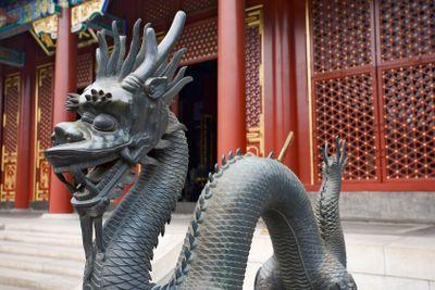 china; beijing : summer palace, dragon