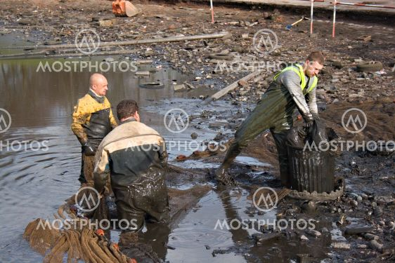 Workmen clearing the lake of fish before it gets dredged