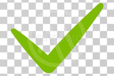 Valid Vector Icon