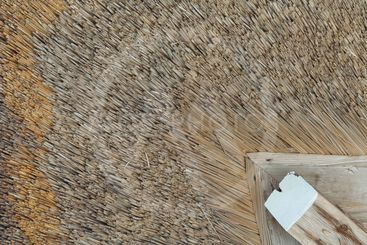 Japanese thatched straw roof.