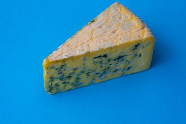 Closeup on a piece of moldy cheese