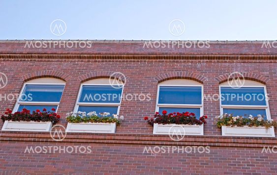 Blue Windows and Flower Boxes