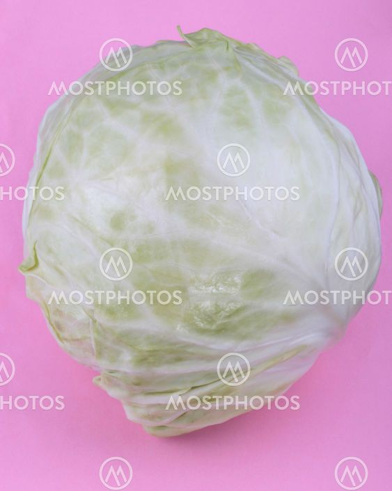 Head of White Cabbage on Pink Background